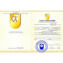 """Удостоверение """"Организация службы информационных технологий"""""""