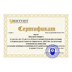 """Сертификат """"Основные принципы и концепции программирования на языке VBA в Excel"""""""