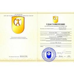 """Удостоверение """"Основные принципы и концепции программирования на языке VBA в Excel"""""""