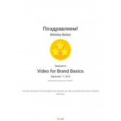 Сертификат Google Video for Brand Basics Assessment