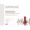 """Сертификат """"Сертифицированный специалист по продуктам ABBYY FineReader, ABBYY Lingvo и ABBYY PDF Transformer"""""""