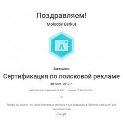 """Сертификат Основы Google Ads """"Поисковая реклама"""""""