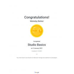 """Сертификат """"Studio Basics (Doubleclick Studio Assessment)"""" 2021"""