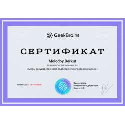"""Сертификат """"Меры государственной поддержки импортозамещение"""""""