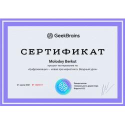 """Сертификат """"Цифровизация — новая эра маркетинга. Вводный урок"""""""
