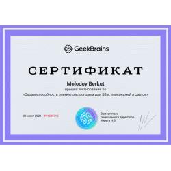 """Сертификат """"Охраноспособность элементов программ для ЭВМ, персонажей и сайтов"""""""