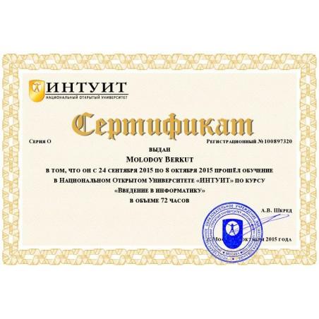 """Сертификат """"Введение в информатику"""""""