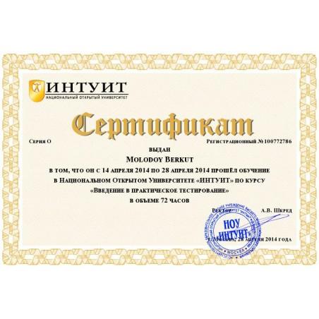 """Сертификат """"Введение в практическое тестирование"""""""