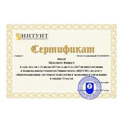 """Сертификат """"Информационные системы и технологии в экономике и управлении"""""""